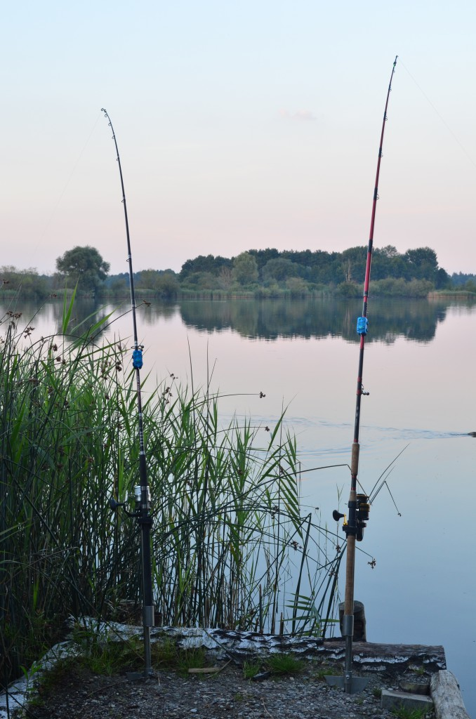 Wallerute Customrod Rutenbau