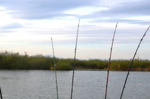 Uferplatz